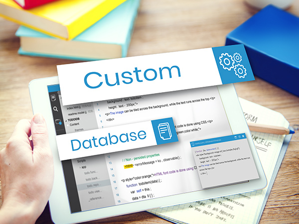 Custom-Database-Development